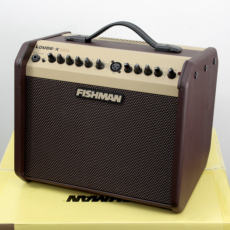 Fishman guitar amplifiers at guitar studio